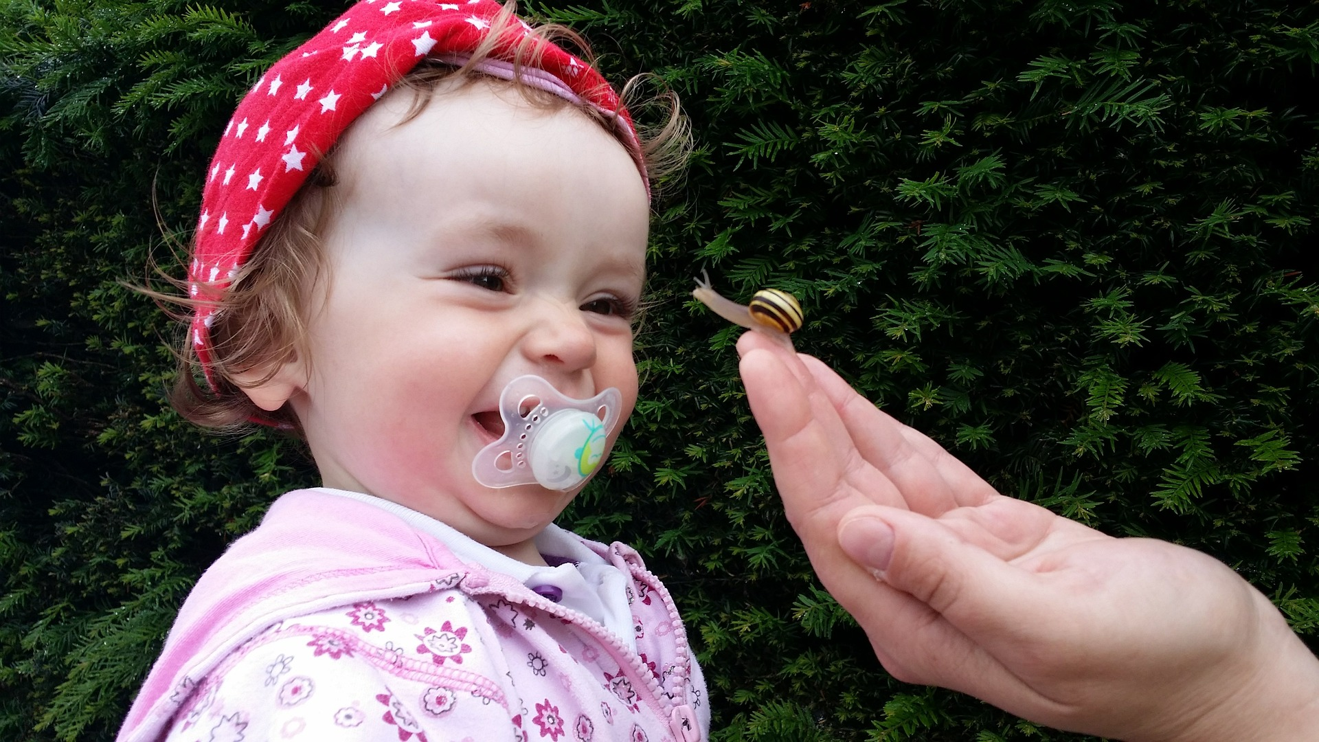 When to give a baby a pacifier – Happy Baby!